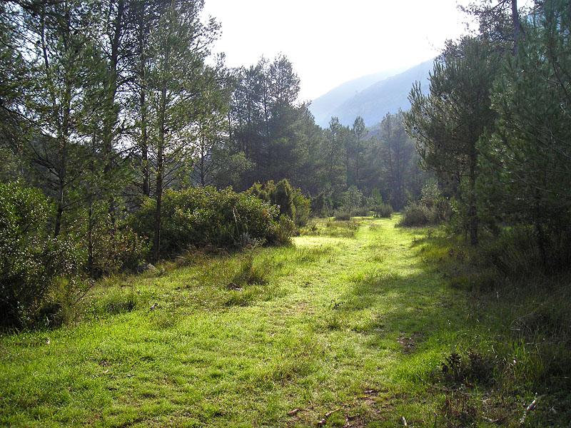 Paraje Natural de Tabarla